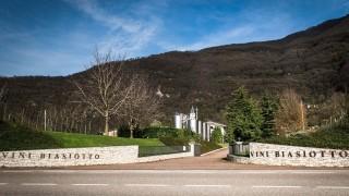 Biasiotto Vini e Spumanti | Azienda Agricola