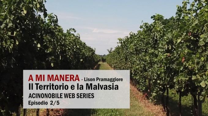 La Malvasia di A Mi Manera: Territorio e Degustazione