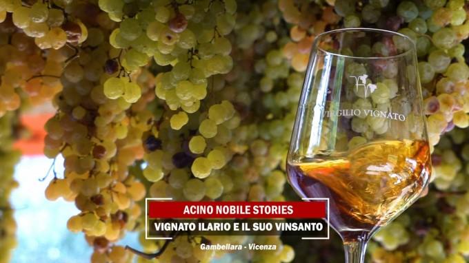 VinSanto di Gambellara | Azienda Agricola Virgilio Vignato