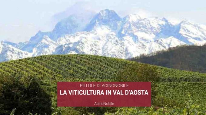 Viti e Vini della Valle d'Aosta
