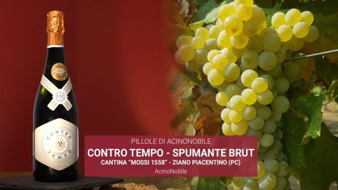 Lo spumante da uve Ortrugo di Cantina Mossi 1558 dei colli piacentini: Controtempo
