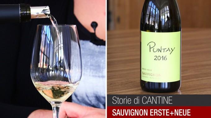 La degustazione del Puntay Sauvignon