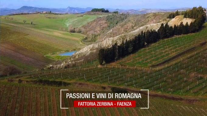 Fattoria Zerbina, Passione e Vini di Romagna