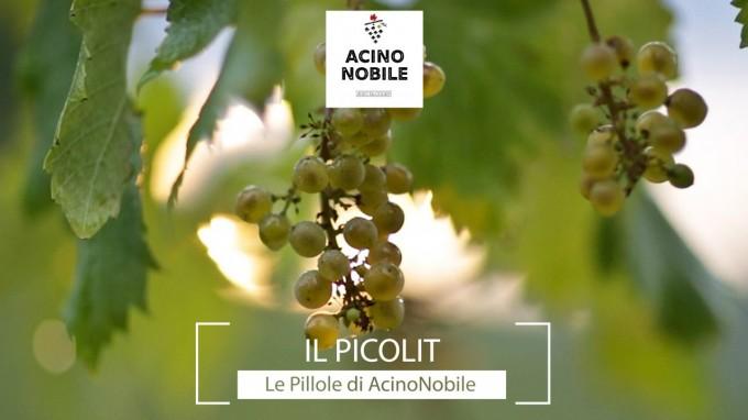 Il Picolit