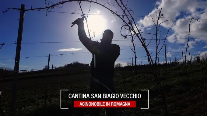 #ItalianWineTour2018: La Cantina di San Biagio Vecchio