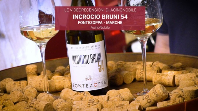Incrocio Bruni 54 di Fontezoppa