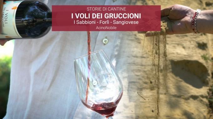 Sangiovese - I Voli dei Gruccioni - I Sabbioni - Emilia-Romagna