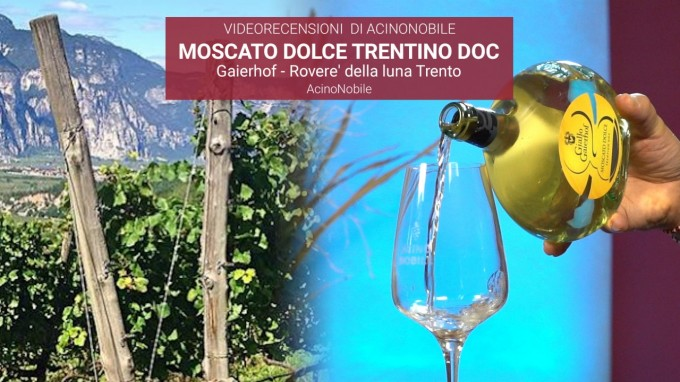 Gaierhof - Moscato Dolce Trentino DOC