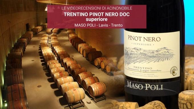 MASO POLI - PINOT NERO SUPERIORE DOC - TRENTINO