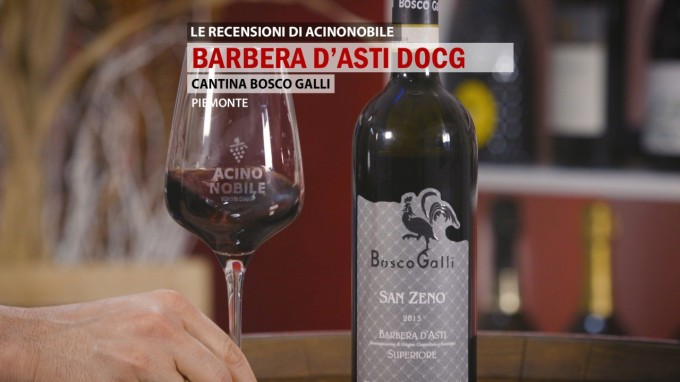 Barbera d'Asti DOCG | Bosco Galli