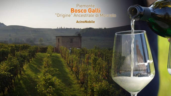 Metodo Ancestrale Moscato | Bosco Galli