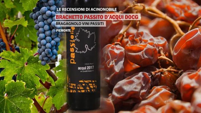 PASSITO DI BRACHETTO D'ACQUI DOCG | Bragagnolo Vini Passiti |