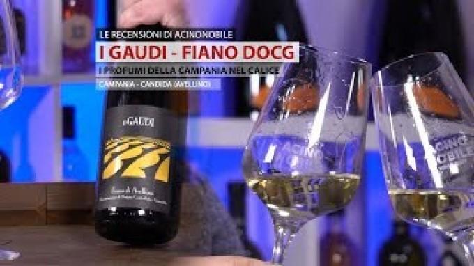 I Gaudi | Fiano d'Avellino Docg