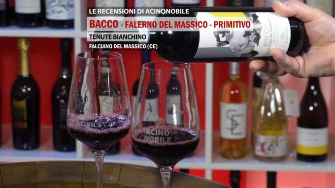 Primitivo Falerno del Massico | Tenute Bianchino