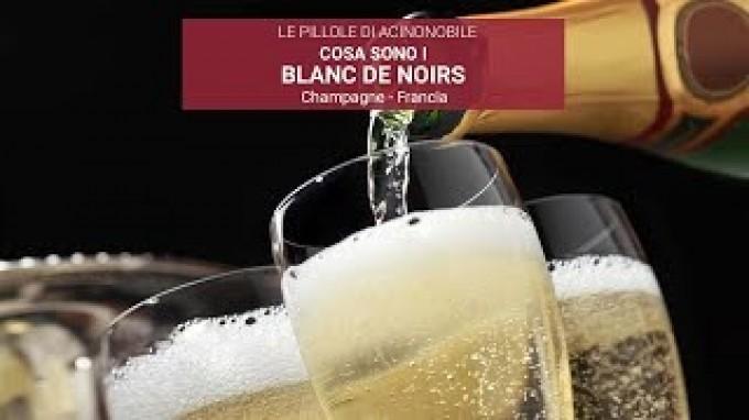 COSA SONO I BLANC DE NOIRS?
