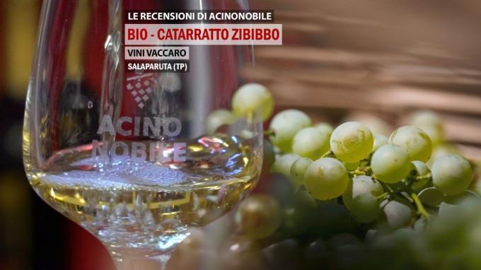 Catarratto & Zibibbo | Vaccaro Vini | Linea Bio