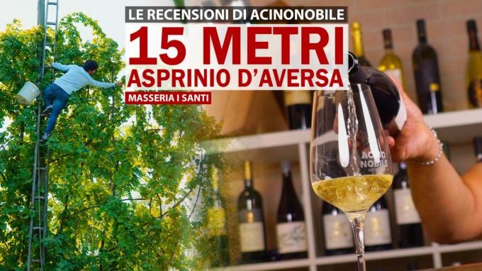 Masseria i Santi | Asprinio d'Aversa coltivato ad Alberata | 15 Metri | Frizzante