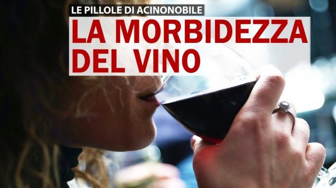 La Morbidezza di un Vino