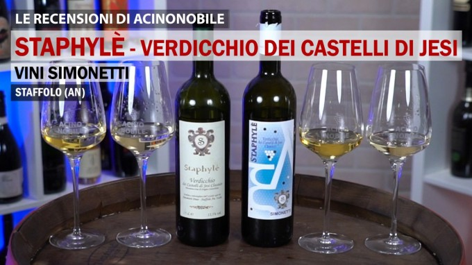 Verdicchio dei Castelli di Jesi | 2019 vs 2006 | Vini Simonetti