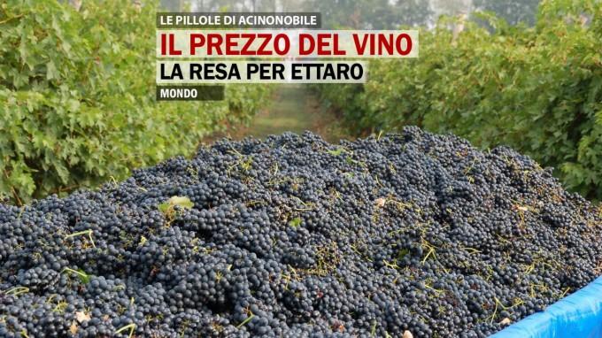 Il prezzo del vino: La resa per ettaro