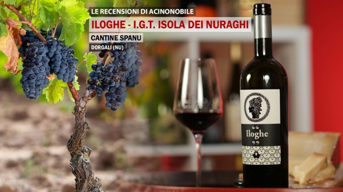 Iloghe | I.G.T. Isola dei Nuraghi | Cantine Spanu | Sardegna