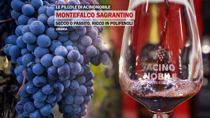 Montefalco Sagrantino | Il vino fruttato Secco o Passito | Umbria