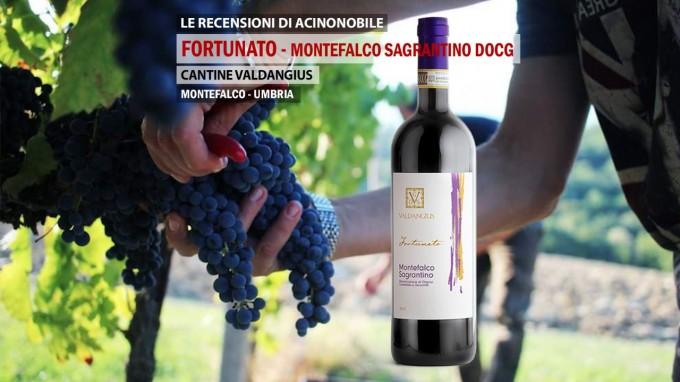 Montefalco Sagrantino DOCG | Cantine Valdangius | Fortunato