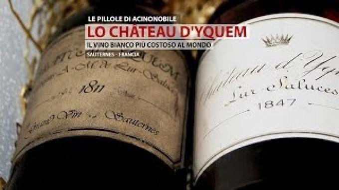 La Château d'Yquem | Il Vino Bianco più Costoso al Mondo
