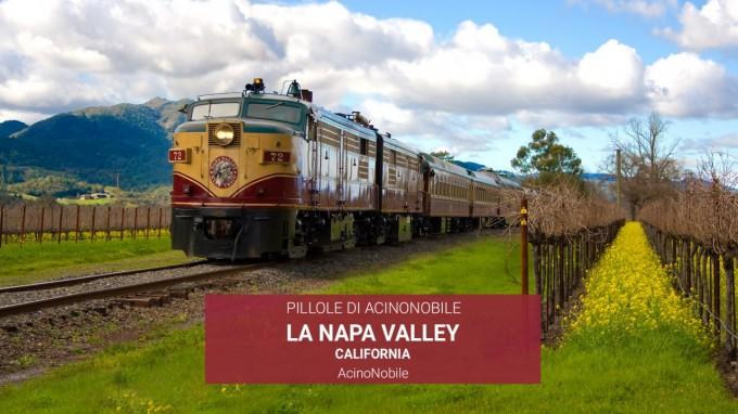La Napa Valley | Storia, Vini, Vitigni e Eno-Turismo