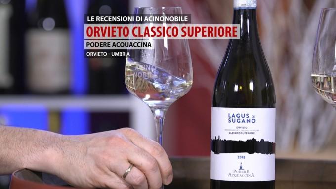 Lagus di Sugano | Orvieto Classico Superiore | Podere Acquaccina