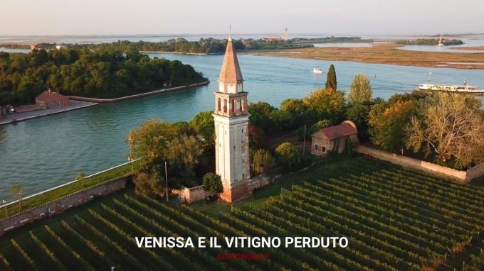 Venissa e la Dorona di Venezia, il vitigno perduto