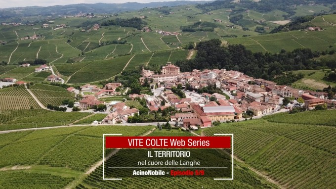 Vite Colte: Il territorio