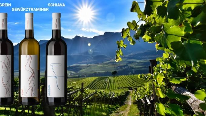 Tenuta Seeperle e il suo box di 3 vini Altoatesini