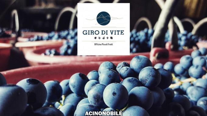Cantina Giro di Vite - Di Vin Parlando - Intervista con il produttore - Piemonte Pinerolo TO