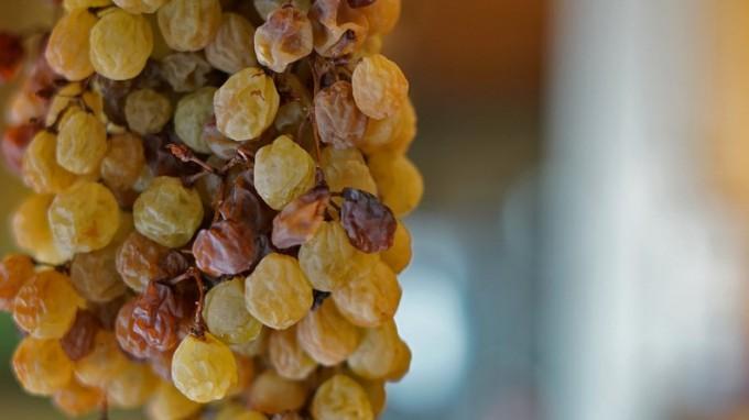 Cavazza Wine e i suoi Picai - Recioto Capitel