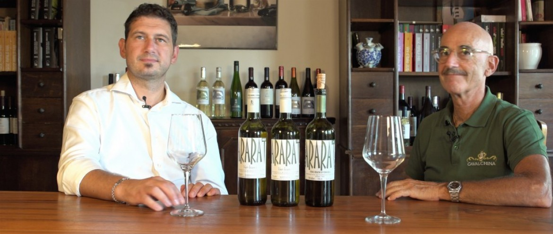 ARARAT, i vini naturali di Cavalchina
